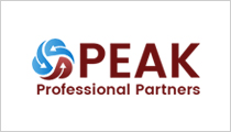 Peak Solution Logo